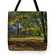 Fall Folliage Stroll Tote Bag