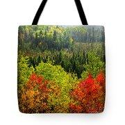 Fall Forest Rain Storm Tote Bag by Elena Elisseeva