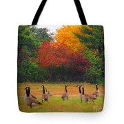 Fall Geese Of Washington Tote Bag