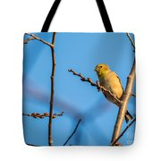 Fall Goldfinch Tote Bag