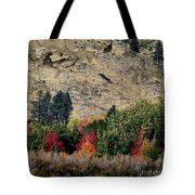 Fall In Carson Valley  Tote Bag