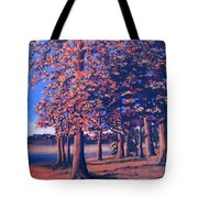 Fall In East Texas Tote Bag