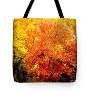 Fall In Full Bloom Tote Bag