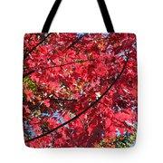 Fall In Illinois Tote Bag