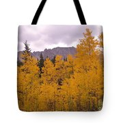 Fall In Maroon Bells Tote Bag