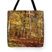 Fall In Michigan Tote Bag