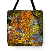 Fall In Nh 2 Tote Bag