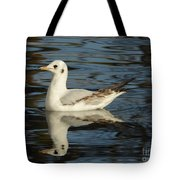 Fall In The Lake In Vienna No.2 Tote Bag
