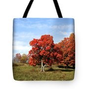 Fall In The Pastures Tote Bag