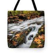 Fall In The Poconos Tote Bag