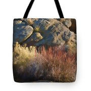 Fall In The Santa Rosas Tote Bag by Scott Campbell