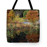 Fall In The Wetlands Tote Bag