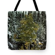 Fall Into Winter Tote Bag