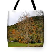 Fall In Virginia Tote Bag by Todd Hostetter