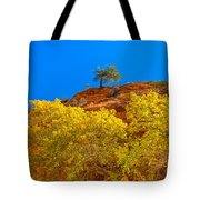 Fall In Zion Tote Bag