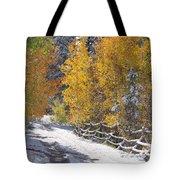 Fall Into Beartrap Meadow - Casper Mountain - Casper Wyoming Tote Bag