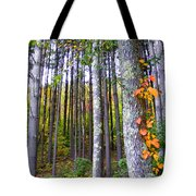 Fall Ivy In Pine Tree Forest Tote Bag