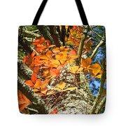 Fall Ivy On Pine Tree Tote Bag