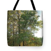 Fall Just Getting A Start Tote Bag