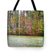 Fall Landscape 2 Tote Bag