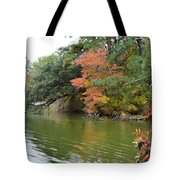 Fall Landscape Around The Lake 2 Tote Bag