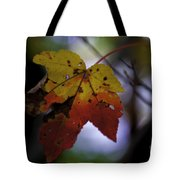 Red And Yellow Maple Leaf Tote Bag