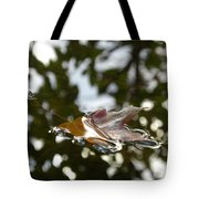 Fall Leaf In Stream Tote Bag