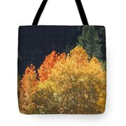 Fall Leave On The East Verde River Tote Bag