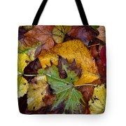 Fall Leaves 1 Tote Bag