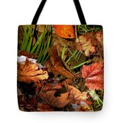 Fall Leaves 5 Tote Bag
