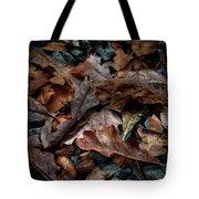 Fall Leaves And Acorns Tote Bag