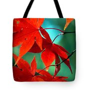 Fall Leaves In All Their Glory Tote Bag