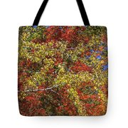 Fall Leaves In So Cal Tote Bag