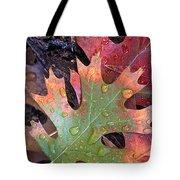 Fall Leaves I V Tote Bag