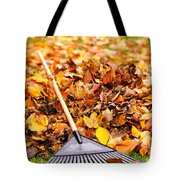 Fall Leaves With Rake Tote Bag by Elena Elisseeva