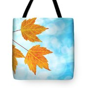 Fall Maple Leaves Trio With Blue Sky Tote Bag
