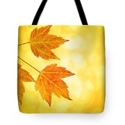 Fall Maple Leaves Trio With Bokeh Background Tote Bag