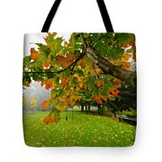 Fall Maple Tree In Foggy Park Tote Bag
