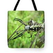 Fall Meadow Spider - Argiope Aurantia Tote Bag
