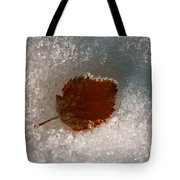 Fall Meets Winter Tote Bag