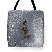 Fall Meets Winter V2 Tote Bag