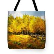 Fall Near Lake City Tote Bag