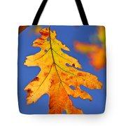 Fall Oak Leaf Tote Bag by Elena Elisseeva