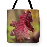 Fall Oak Leaf Tote Bag