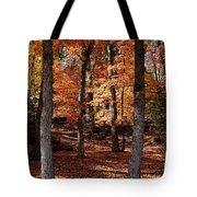 Fall On A Stump Tote Bag