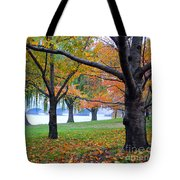 fall on the Potomac River Tote Bag
