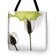 Fall On White Tote Bag