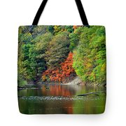 Fall Painting Tote Bag by Frozen in Time Fine Art Photography