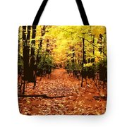 Fall Path Tote Bag
