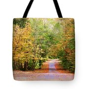 Fall Pathway Tote Bag by Judy Vincent